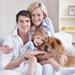 Cerchi un'assicurazione per casa tua? Scopri HDI Maglia e proteggi la tua famiglia!