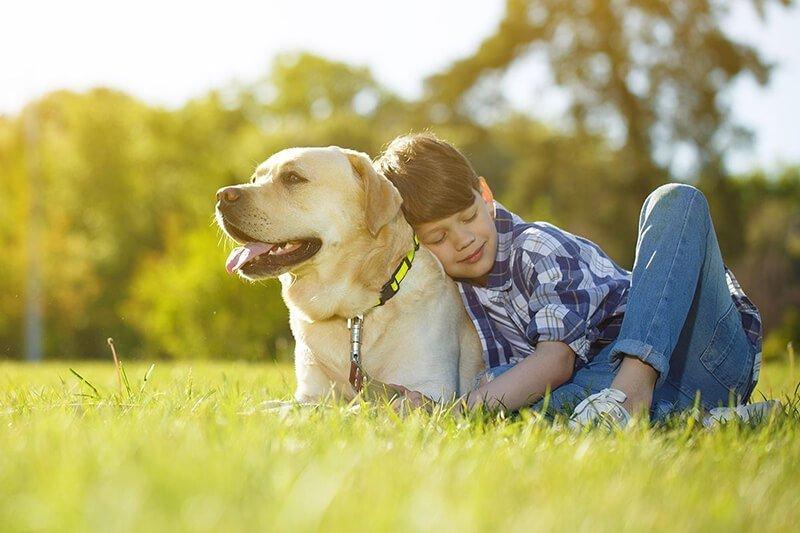assicurazione famiglia + cane