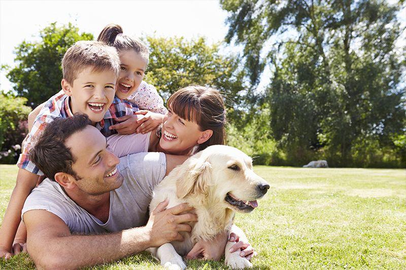 Assicurazione Famiglia - Maglia Assicurazioni - anteprima